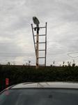 駐車場灯3